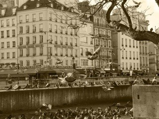 EXTRA Parížske zvieratá