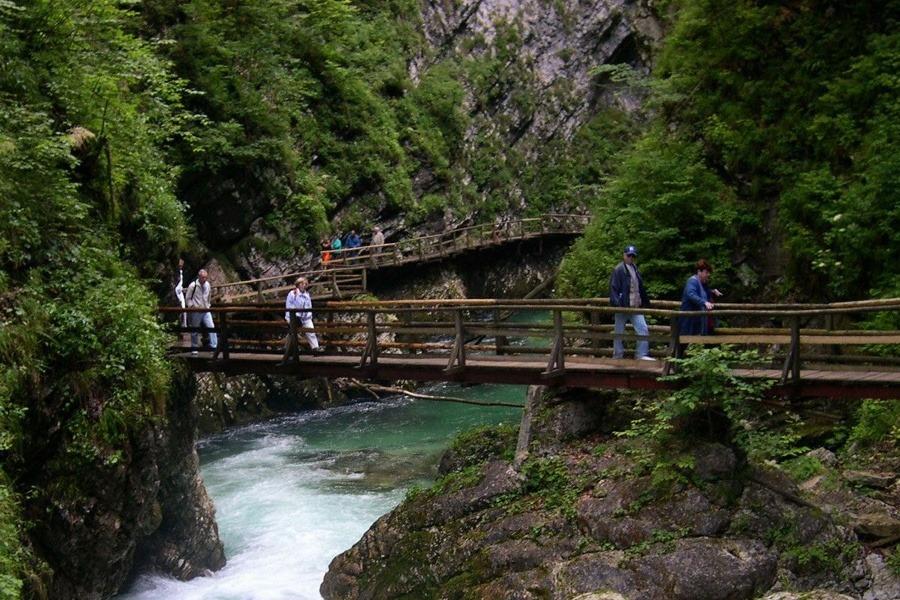 Slovinsko má v rukáve samé prekvapenia