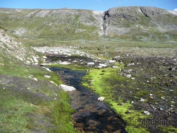 Krajine sobov - národný park dovrefjell - sunndalsfjella