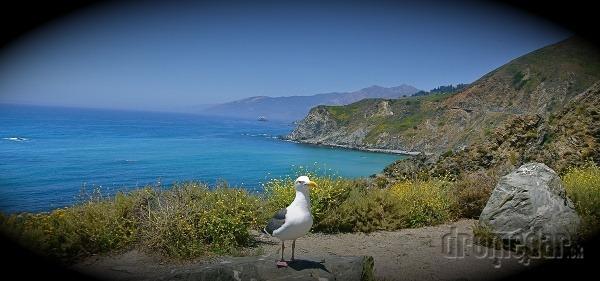Californské pobrežie, USA