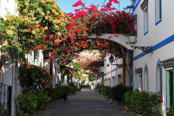 Malorka, Ibiza či Kanárske