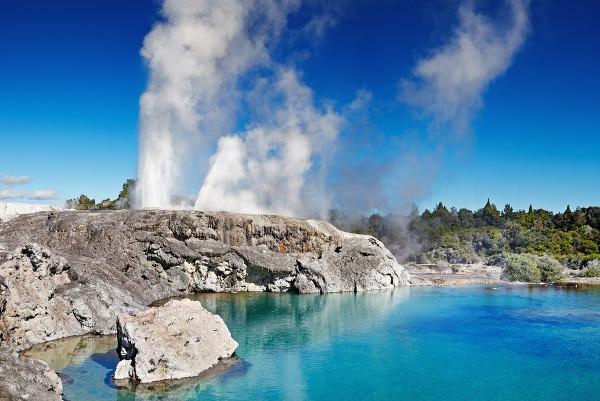 Geotermálne údolie Whakarewarewa, Nový