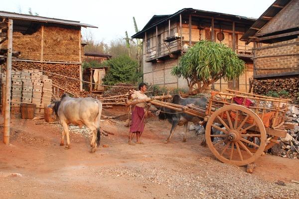 Mjanmarsko očami Slovenky Zuzany