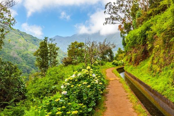 Ostrov Madeira