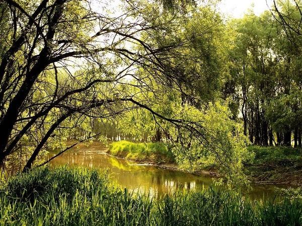 Národný park Kopački rit,