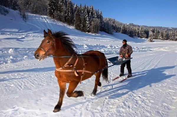 Adrenalín v Tatrách: 10