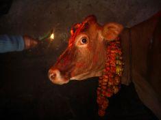 Hinduistický rituál