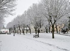 Dnes napadol prvý sneh :)