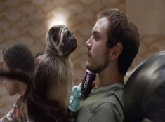 Šteňa Monkey Baby