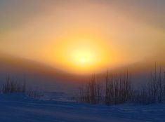 Mrazivá zima na Aljaške