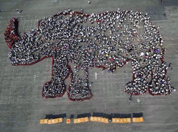 Svetový deň nosorožcov
