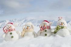Rodinka snehuliakov