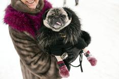Aj zvieratkám je zima
