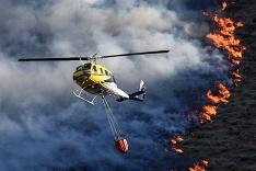 Lesné požiare