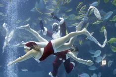 Potápač Santa