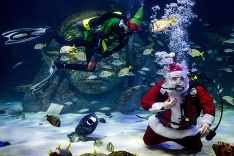 Podmorský Santa Claus