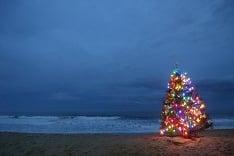 Vianočný stromček na pláži