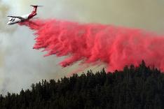 Boj s lesným požiarom