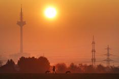 Frankfurtská televízna veža
