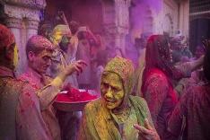 Festival farieb