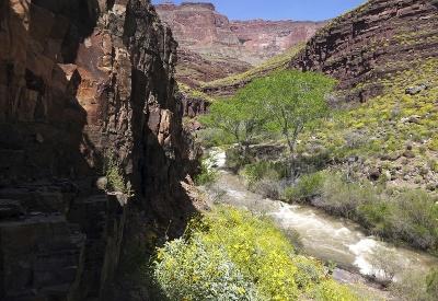 Národný park v Arizone