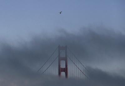Orol v San Franciscu