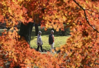 Nádherná jeseň v Japonsku