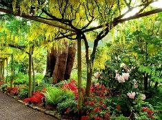 Aj takéto vedia záhrady byť