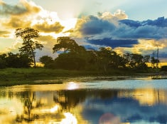 Na brehoch Amazonky