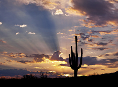 Východ slnka v púšti
