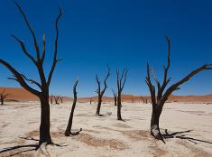 Púšť ako namaľovaná