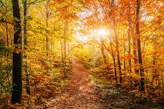 Vyberte sa na výlet do prírody