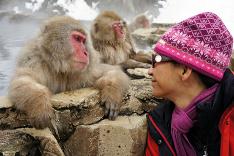 Snežný makak v Japonsku