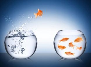Najväčšia fluktuácia zamestnancov je v obchode a marketingu