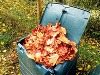 Veľký jesenný manuál do