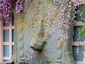 Pod sladko voňajúcimi kvetmi