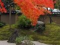 Pre japonské záhrady sú