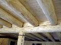 Trámový strop z masívneho