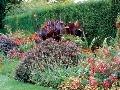 Anglický typ kvetinového záhona