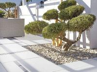 Ako sa popasovať s okolím domu, výberom záhradného nábytku a osvetlenia