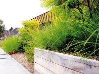 Priestranná pobytová terasa na