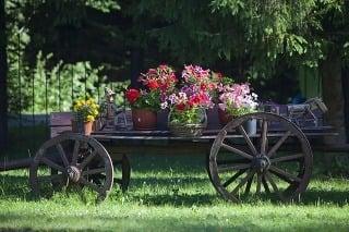 Pôvab anglických vidieckych záhrad
