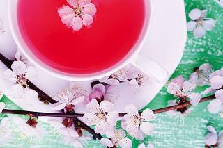 Plusy a mínusy čajovarov od štyroch známych značiek