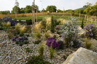 Plánovanie záhrady krok po kroku