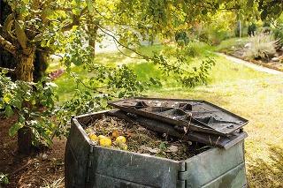 Do kompostu nikdy nepridávajte choré a chemicky ošetrené rastliny ani vňať zemiakov.