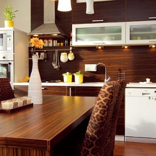Kuchyňa - dispozícia a