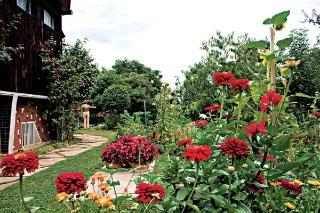 Záhrada ako od Moneta