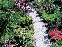 Záhrada ako večné dieťa