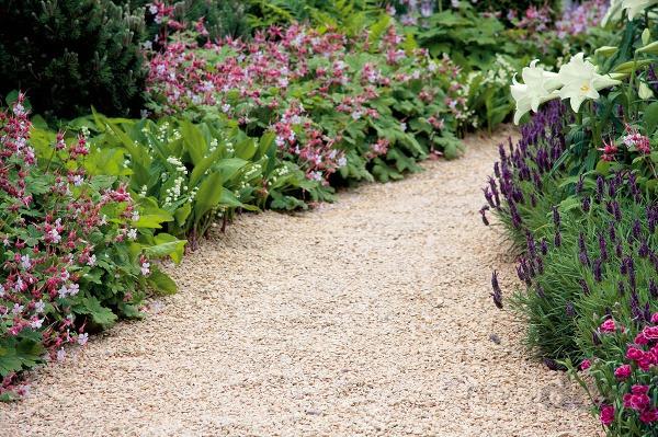 Rastliny spríjemne voňajúcimi listami