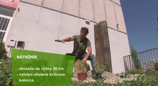 VIDEO: Ucelená kompozícia otvoreného